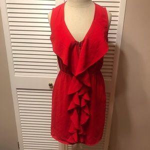 Birdcage Tag (Francesca's) Medium Dress